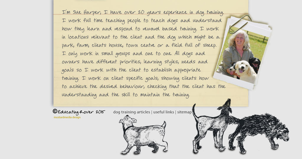 I'm Sue Harper a dog trainer based in Worcestershire, a long standing member of the APDT.  I work full time teaching people to teach dogs and understand how they learn and respond to reward based training. I work in locations relevant to the client and the dog which might be a park, farm, clients house, town centre or a field full of sheep.  I only work in small groups and one to one. All dogs and owners have different priorities, learning styles, needs and goals so I work with the client to establish appropriate training. I work on client specific goals, showing clients how to achieve the desired behaviour, checking that the client has the understanding and the skill to maintain the training.